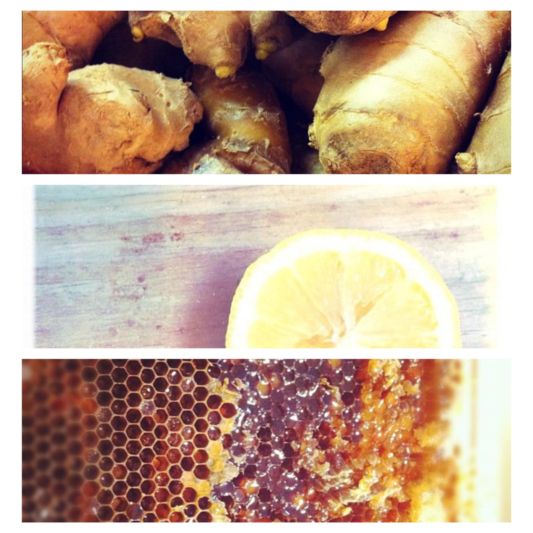 Honey Lemon Ginger Tea with Turmeric | olanaturalhealing
